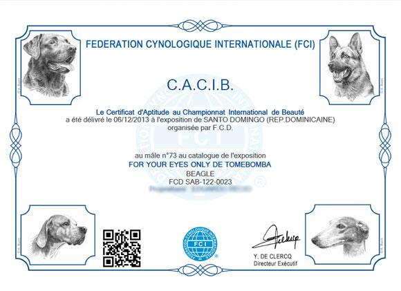 cacib-dec-2013